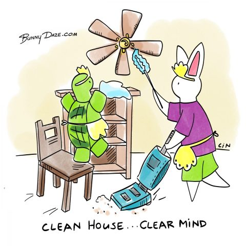 Clean House…Clear Mind