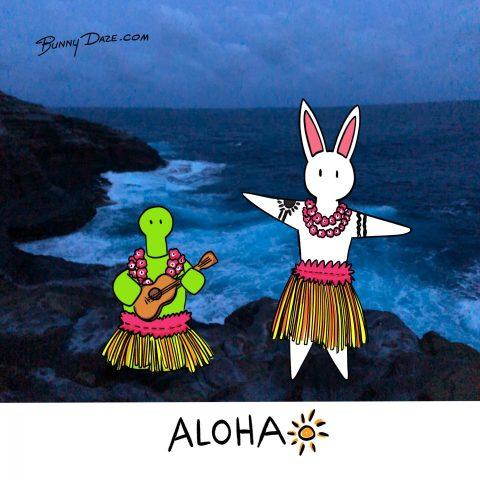 Aloha ☀