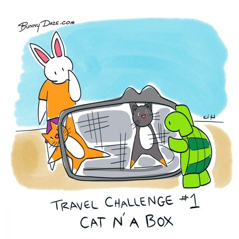 Travel Challenge #1 Cat N'A Box
