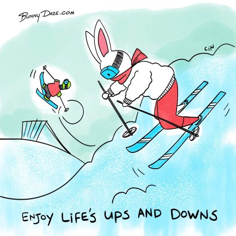 Enjoy Life's Ups and Downs