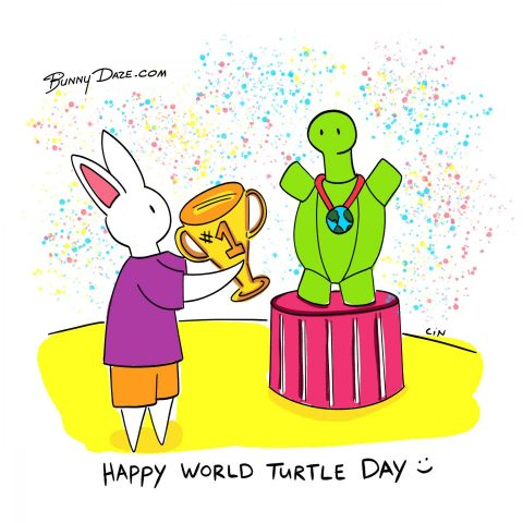 Happy World Turtle Day :)