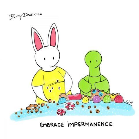Embrace Impermanence