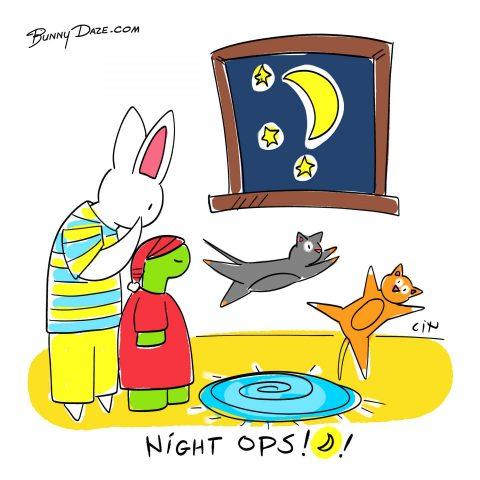 Night Ops!!!