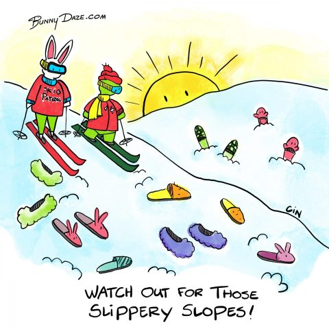 Watch out for those Slippery Slopes!
