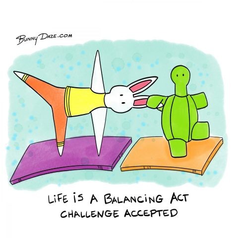 Life is a Balancing Act…Challenge Accepted